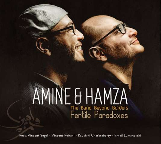 AminHamzaFertiles