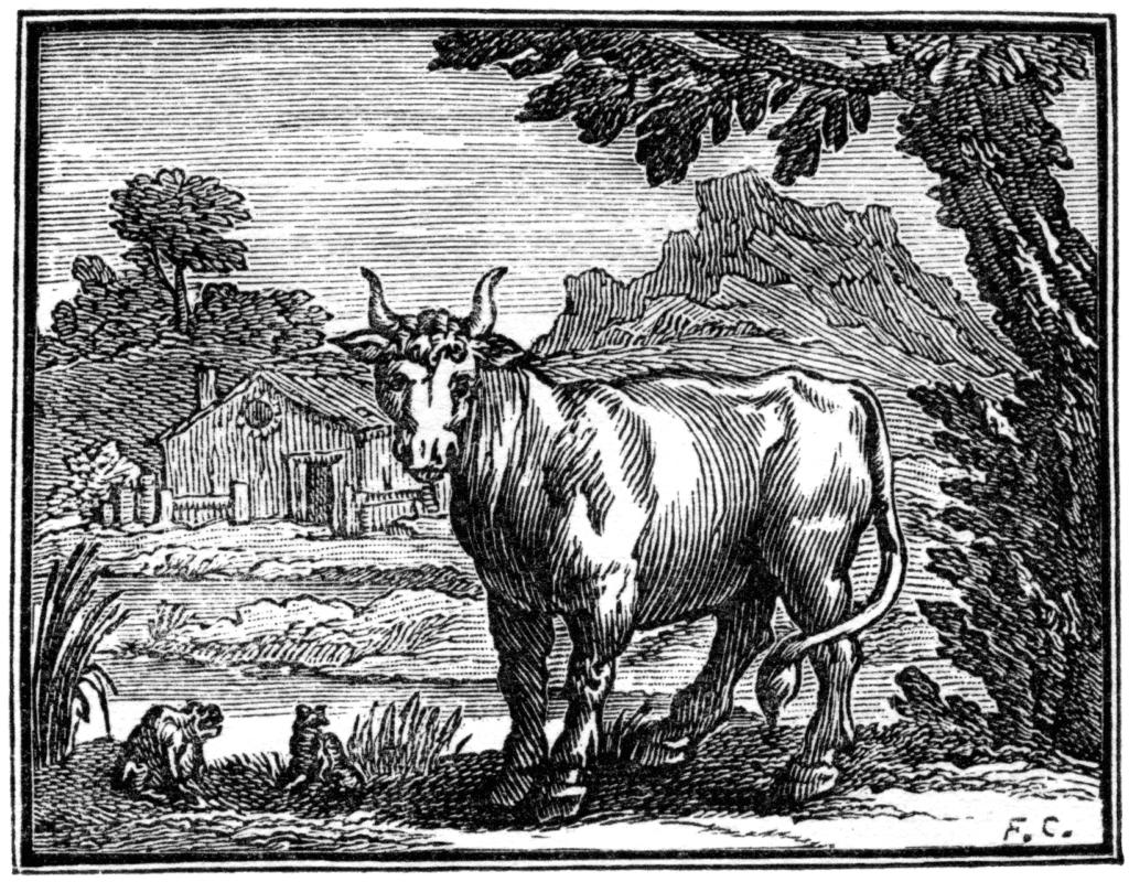 """Gravure du 17e siècle, illustrant la fable de La Fontaine """"La grenouille qui veut se faire aussi grosse que le boeuf""""."""