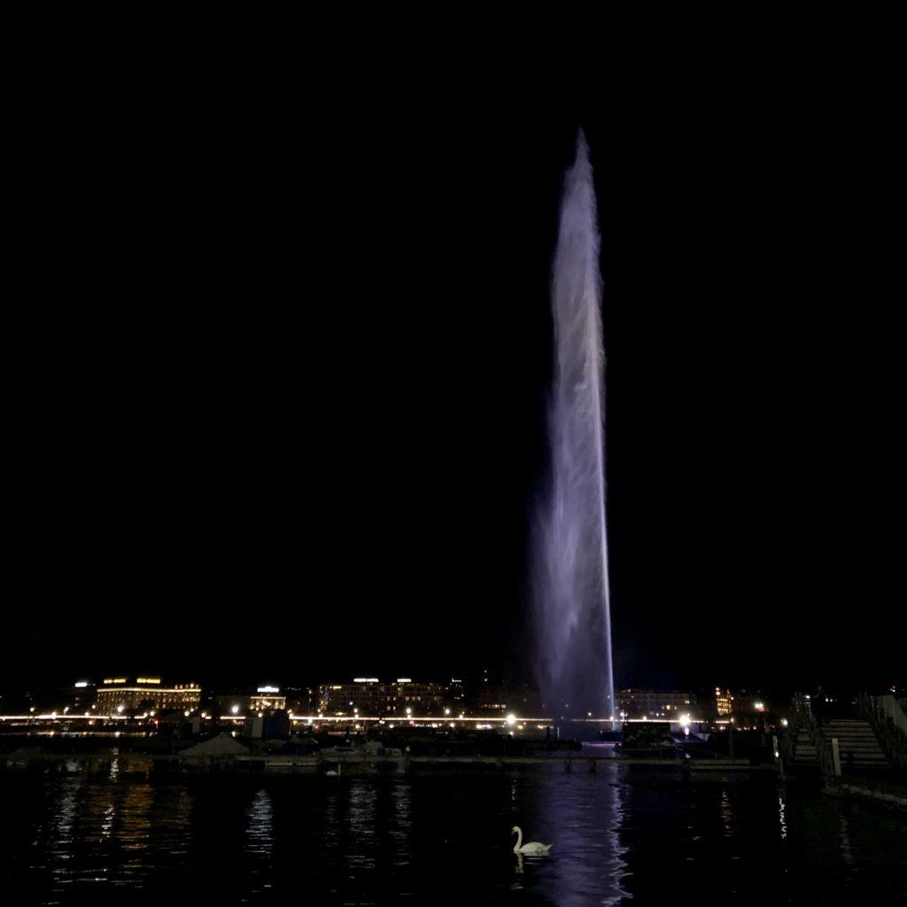 Vue du jet d'eau de Genève la nuit, avec un cygne au premier plan.